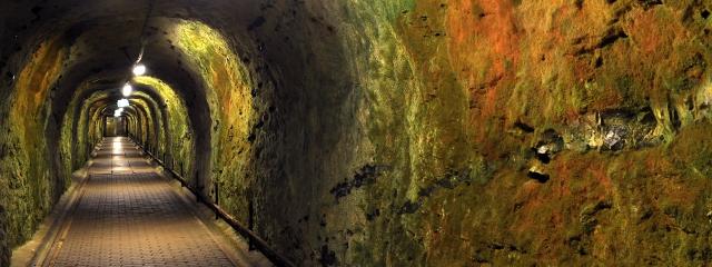 Trampestien - wędrowny szlak na Stevns
