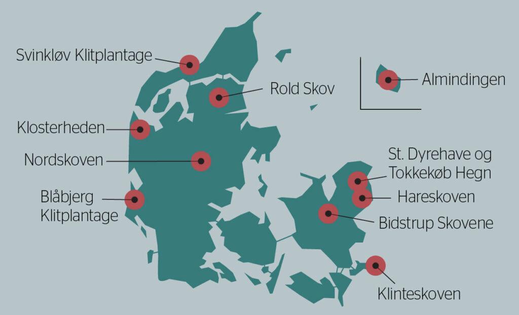 Dania najbardziej aktywną nacją Unii Europejskiej