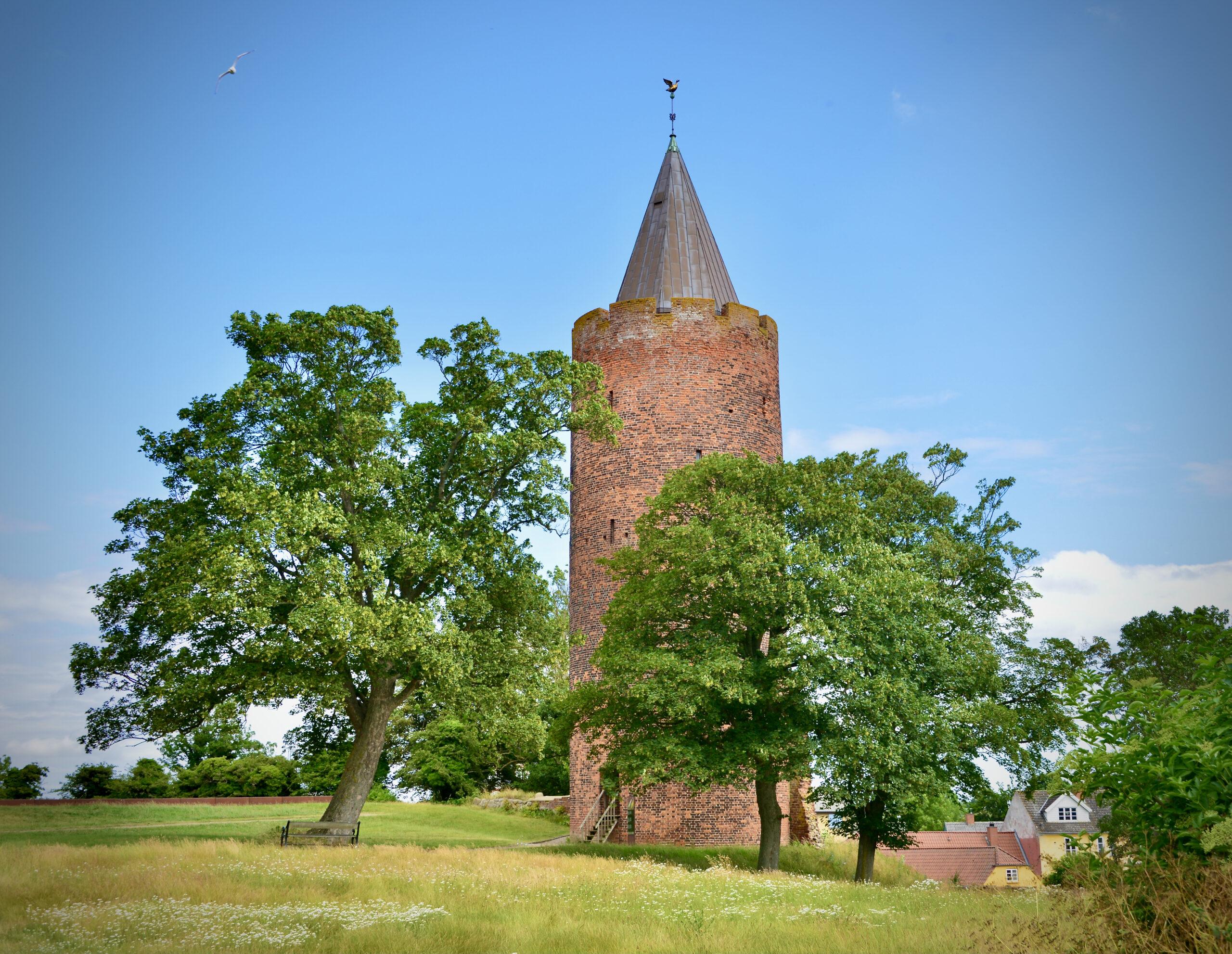 Gęsia Wieża w Vordingborgu czyli Gåsetårnet i Vordingborg
