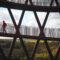 Camp Adventure – leśna wieża, park linowy i glamping